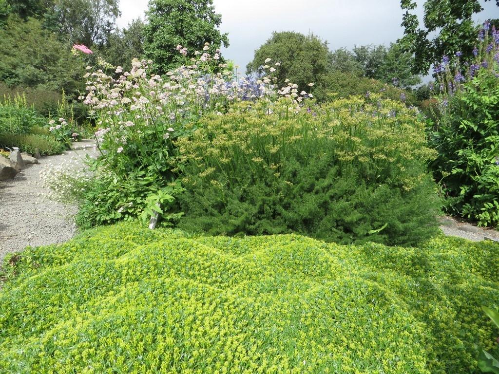 Jardin Akureyri.