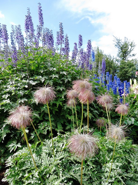 Le jardin botanique d'Akureyri est le jardin le plus septentrional de la planète. Il présente 440 variétés de plantes endémiques et de très nombreuses autres espèces.