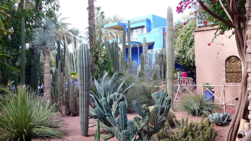La villa vue du jardin de cactées.