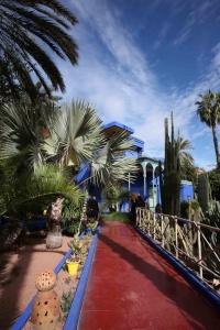 Les palmiers protègent du soleil ardent les espèces plus fragiles.