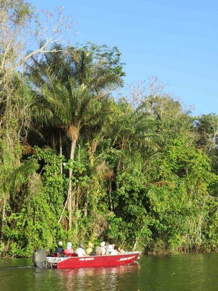 Une à deux fois par jour, les passagers sont invités à embarquer dans des annexes pour découvrir la faune et la flore de la forêt inondable.
