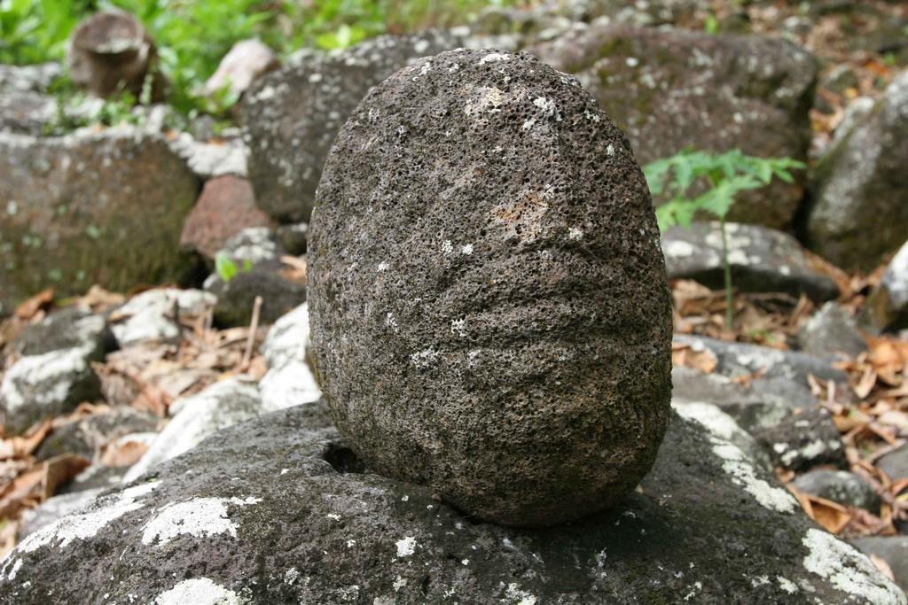 Située en-dessous de la pierre d'autel, on remarque une tête arrondie, irrégulière taillée dans une pierre volcanique noire et poreuse. Cette tête est considérée comme tapu.