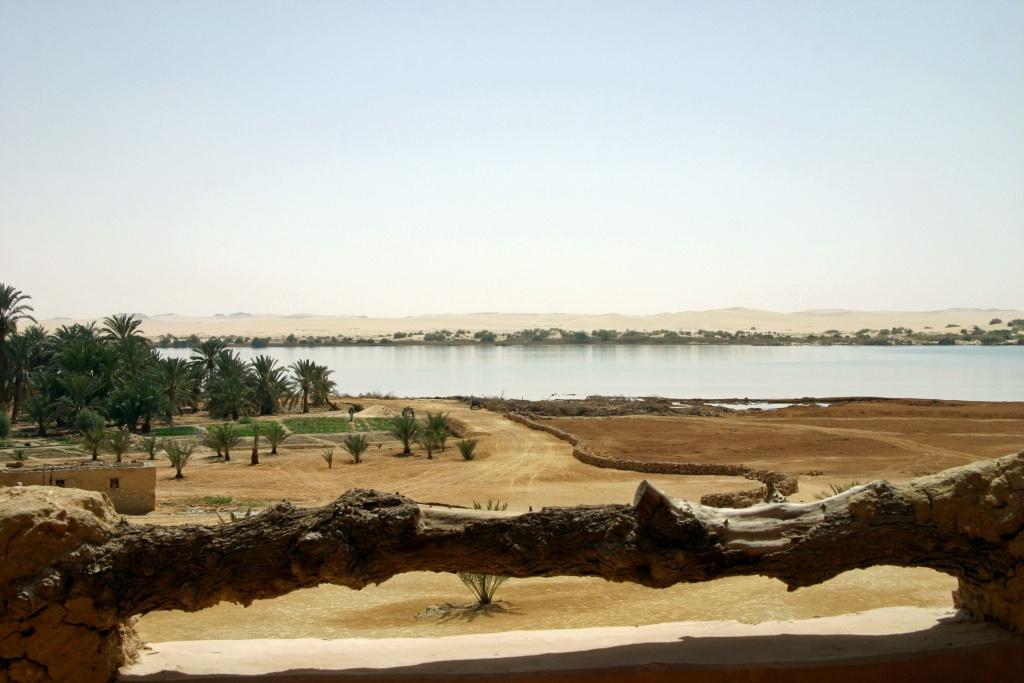De l'écolodge Adrere Amellal, on a une belle vue sur le grand lac et la palmeraie. Malheureusement, les eaux souterraines ne sont plus suffisantes alors que l'eau salée, issue du drainage agricole, augmente, ce qui a déjà causé la destruction de beaucoup de palmiers.