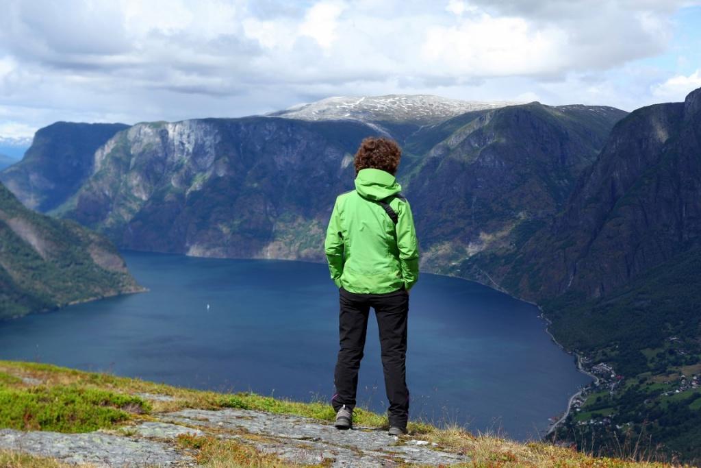 Depuis la montagne, on a une vue fantastique sur l'Aurlandsfjord et les montagnes environnantes.