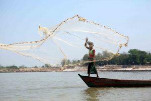Depuis le pont supérieur, nous admirons quelques pêcheurs pêchant à l'épervier d'un geste sûr et élégant.