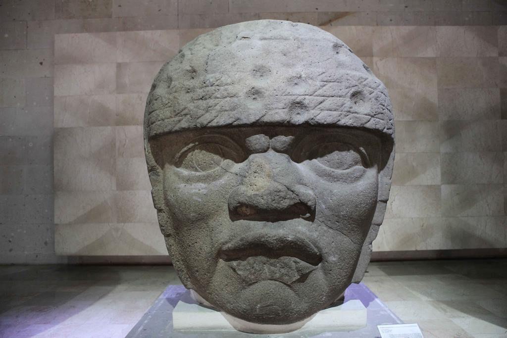 Tête colossale n° 3. Les traits du visage sont très différents des autres têtes de San Lorenzo. Certains pensent qu'il pourrait s'agir d'une femme. La coiffe est composée de 4 rangs de cordes avec des impacts circulaires qui pourraient être des mutilations intentionnelles à l'époque olmèque. 1200 av. J-C – 900 apr. J-C