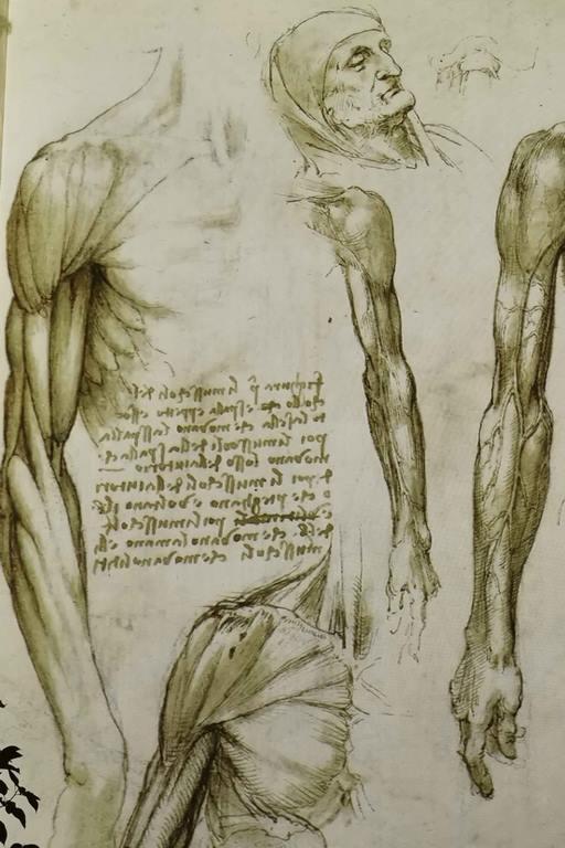 Pour protéger ses écrits des regards indiscrets, Léonard de Vinci pratiquait l'écriture spéculaire, appelée plus communément « écriture en miroir », car il fallait un miroir pour lire ses manuscrits.