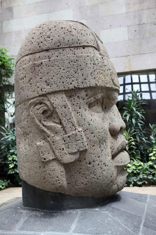 Tête colossale no 1 de profil. Découverte en 1946 par Stirling, cette tête fut dénommée « le Roi » par ses inventeurs en raison de son aspect majestueux. Elle est la première découverte sur le site de San Lorenzo Tenochtitlan. De toutes les têtes olmèques, celle-ci est l'une des plus belles et des plus réalistes. La coiffe que porte ce dignitaire montre une griffe de jaguar inversée. Le pendant de l'oreille tubulaire qui perfore l'oreille fait le lien avec la coiffe. 1200-900 avant notre ère. 2,85 m × 2,11 m.