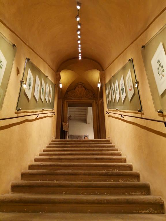 L'escalier qui mène au piano nobile, au musée proprement dit, expose des tables botaniques provenant des herbiers conservés dans la Bibliothèque antique du musée.