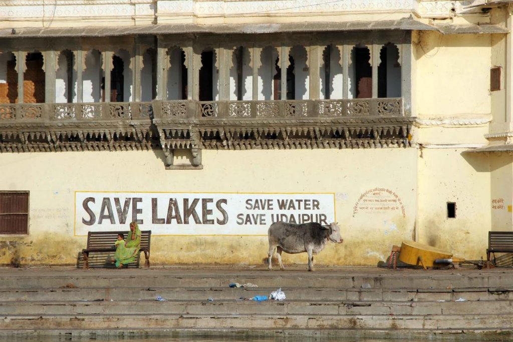 Seul bémol, la pollution du lac Pichola. «Économisez l'eau, sauvez nos lacs, plaident les affiches de l'Udaipur Lake Conservation Society. Cependant, un gros travail reste à faire…