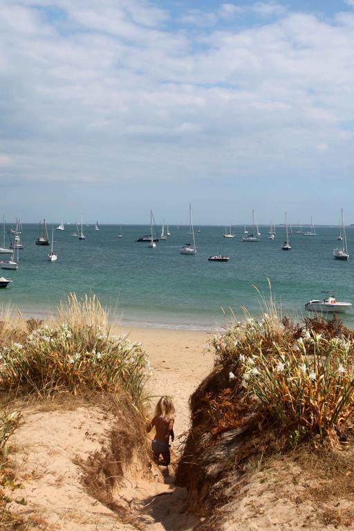 Ne cueillez pas cette petite merveille qu'est le lys maritime (Pancratium maritimum). Cette espèce est particulièrement défendue car elle ne s'épanouit qu'ici et à Hoëdic, ainsi que sur les sables de l'Algarve au Portugal.