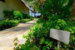 Zanzibar. Hôtel Zawadi. De petites pancartes, affichant des noms de poissons locaux, indiquent chaque cottage niché dans un écrin végétal.