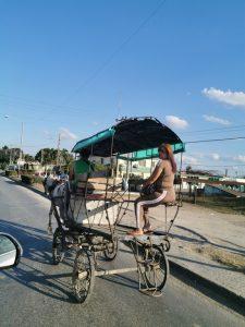 Cuba. Le pays souffrant de pénuries de carburant, on recourt de plus en plus à la traction animale comme moyen de transport.