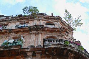 La Havane. Les arbres poussent dans les fissures de ce bâtiment situé dans une rue adjacente à la Calle de Obispo.