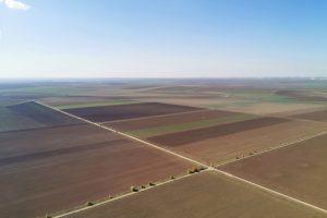Roumanie. Dobroudja. Héritage des kolkhozes soviétiques, les champs de céréales, tournesol et colza sont tracés au cordeau, sans haies entre les parcelles. Vue d'avion.