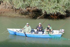 Roumanie. Delta du Danube. Les pêcheurs sont venus très tôt pour attraper carpes et silures.