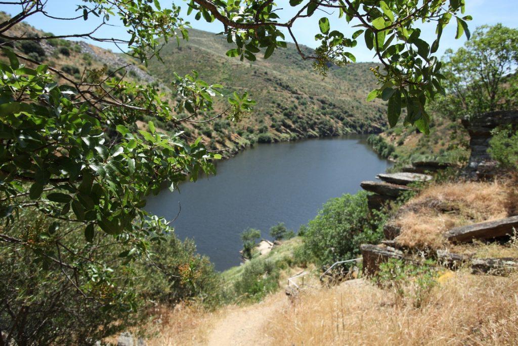 Portugal. Vue amont de la vallée du Côa à Canada do Inferno. Les roches visibles sur la photo sont gravées sur leur face verticale.