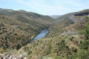 Portugal. Abords de la rivière Côa.