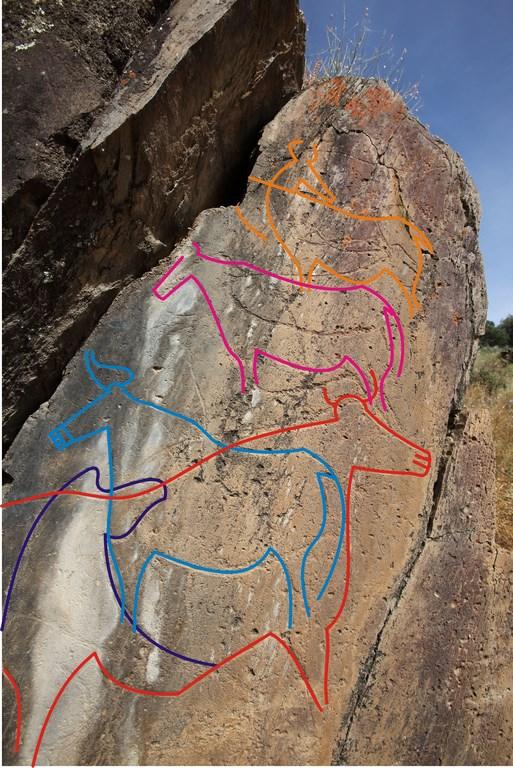 Portugal. Roche n° 3 de Penascosa, attribuée à la phase solutréenne ; plusieurs figures animales superposées se distinguent. Croquis © L. Luis, Parque Arqueológico do Vale do Côa.