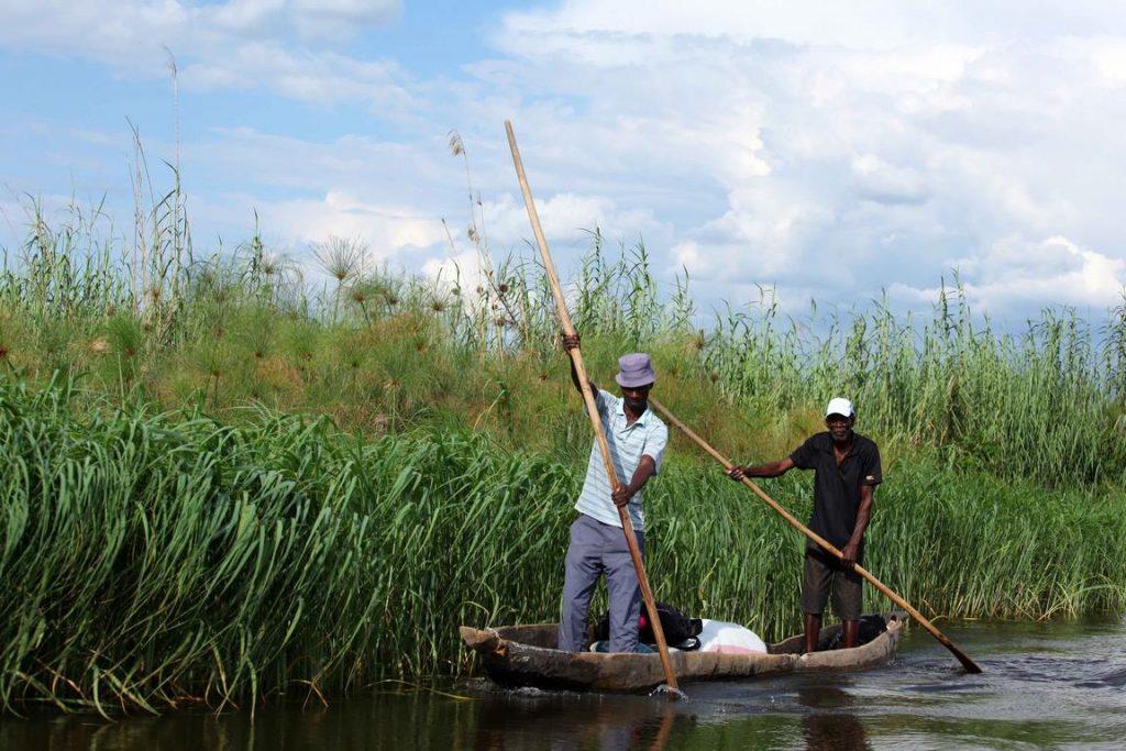 Bostwana. Rivière Chobé. Des bateliers locaux (appelés « polers ») se déplacent dans leurs mokoro, ces fameuses barques traditionnelles creusées dans le bois et manœuvrées à l'aide d'une longue perche.