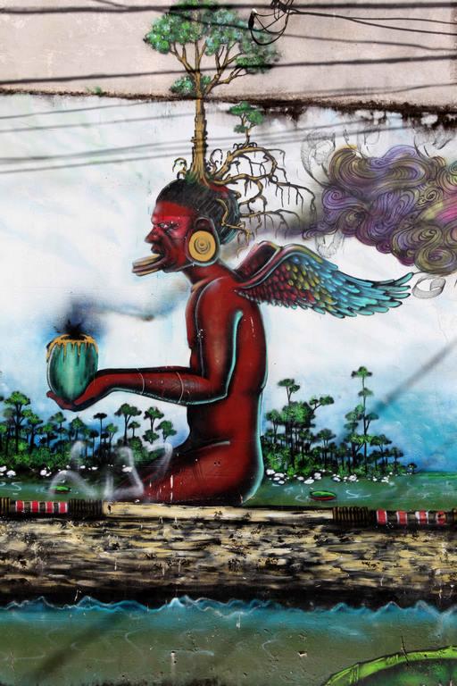 Brésil. Salvador de Bahia. Street art. Détail.