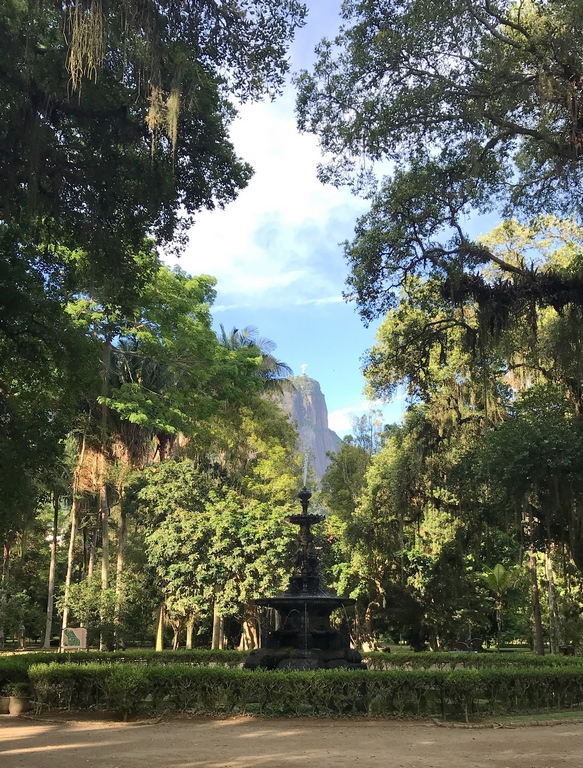 Brésil. Rio de Janeiro. Vue sur le Corcovado depuis le jardin botanique.